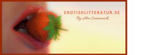 Erotisk litteratur, noveller och romaner.