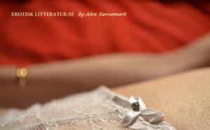 Erotiska noveller och romaner